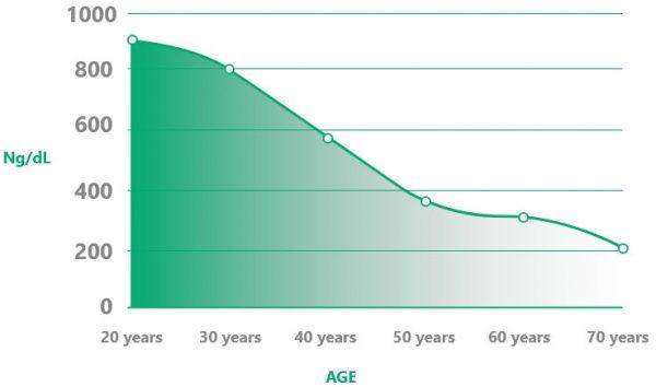 TestoGen Graph